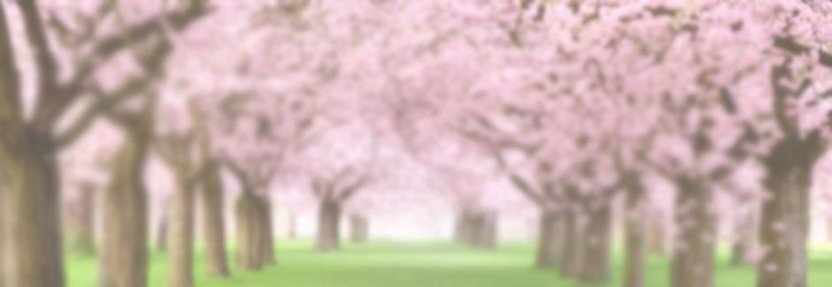 Nadine-Slider-Cherry-Blossom